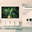 Corridor with forest printed wall art