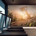 Aspex printed wall art runner in a fitness center