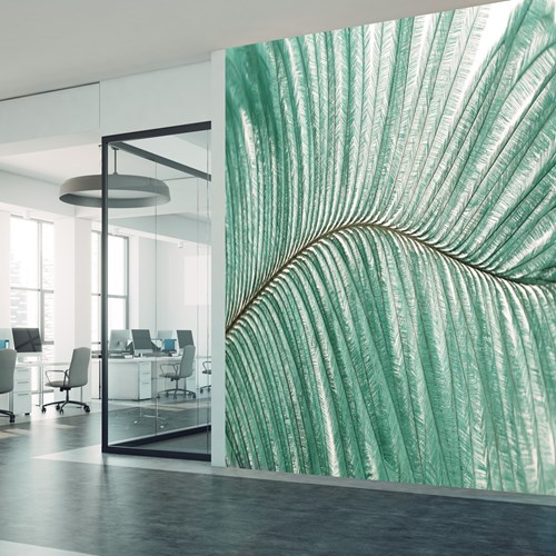 Aspex printed wall art of fern leaves in an office space