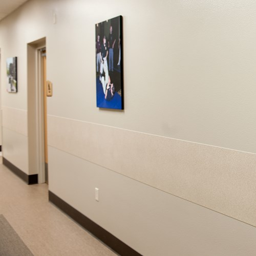 Wide rigid vinyl rubrail in corridor